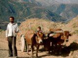 Türkei 1989 - der Osten (27/39)